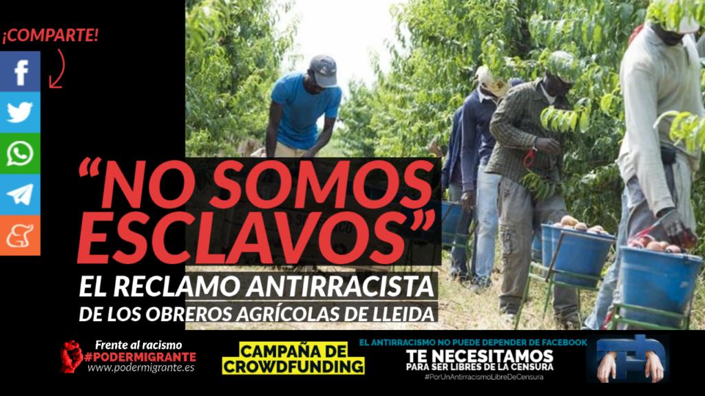 """""""NO SOMOS ESCLAVOS"""": el reclamo antirracista de los obreros agrícolas de Lleida"""
