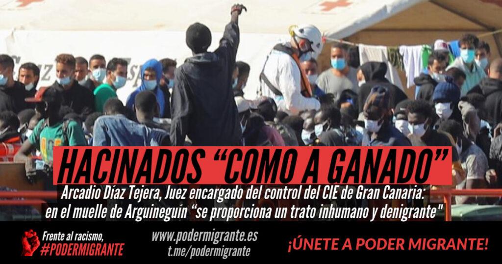 """MIGRANTES SON HACINADOS """"COMO A GANADO"""" en el muelle de Arguineguín"""