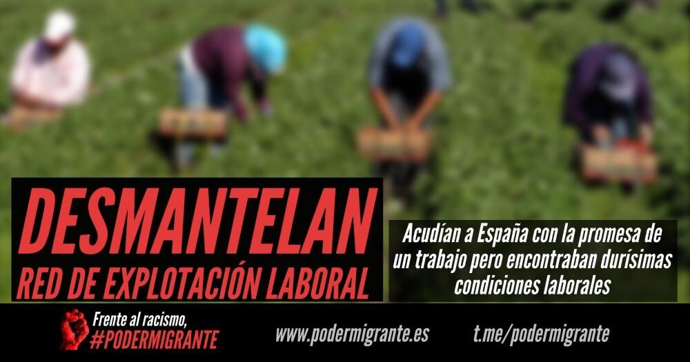 DESMANTELAN RED DE EXPLOTACIÓN LABORAL